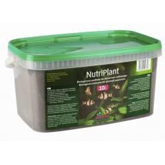 Nutriplant akvarijní substrát 10l