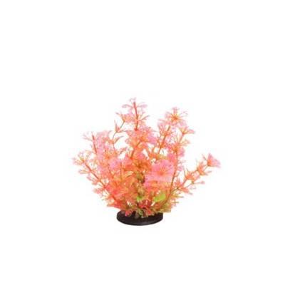 Akvarijní rostlina Premium Plant 208, výška 14 cm