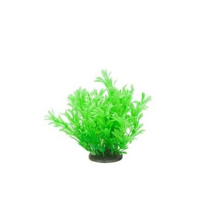 Akvarijní rostlina Premium Plant 216, výška 14 cm