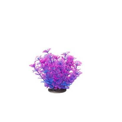 Akvarijní rostlina Premium Plant 214, výška 14 cm