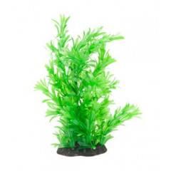 Akvarijní rostlina Premium Plant 316, výška 25 cm