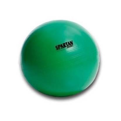 Gymnastický míč 65 cm SPARTAN