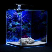 Akvárium set NEO LIGHT MARINE 30l DIVERSA