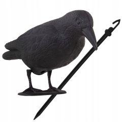 Plašič ptáků a holubů Havran sedící 39x19x11 cm černý