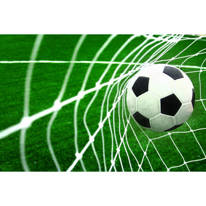Fotbalová síť SPARTAN 213x152x76 cm