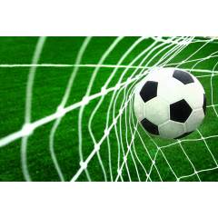 Fotbalová síť 213x152x76 cm SPARTAN