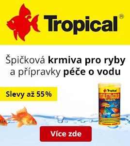 Tropical